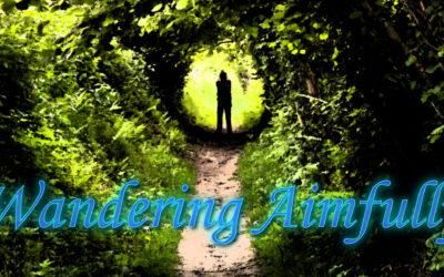 Wandering Aimfully